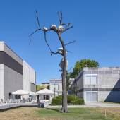 Giuseppe Penone, Idee di pietra-1891 Kg di luce © Giuseppe Penone, VG Bild-Kunst Bonn, 2020, Foto: Tom Gundelwein / Stiftung Saarländischer Kulturbesitz.