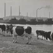 Albert Renger-Patzsch, An der Ruhrmündung bei Duisburg, 1929/30  © Albert Renger-Patzsch / Archiv Ann und Jürgen Wilde / VG Bild-Kunst, Bonn 2016