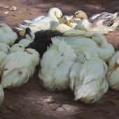 Alexander Koester (Neustadt, heute Bergneustadt 1864 - 1932 München) Ruhende Enten in der Sonne und im Halbschatten, um 1905 Öl auf Leinwand, 73 x 92,5 cm, unten rechts signiert