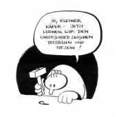 Kleiner Käfer Rudi Klein © Rudi Klein