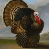 BAGSHAWE FINE ART, Wenzel Peter (Czech 1745-1829)  Wild Turkey  Oil on Canvas  38.5 x 28.5 inches