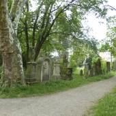 Alter Friedhof in Freiburg © Deutsche Stiftung Denkmalschutz/Wegner