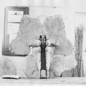 Walter Pichler Schmetterling 1962 Gips 68 x 70 x 16 cm Foto: Friedl Kubelka © Bildrecht Wien 2017