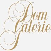 Logo (c) dom-galerie.at