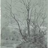 Johann Georg von Dillis: Landschaft mit Bäumen, um 1830, schwarze Kreide, Pinsel/schwarze Tusche und Deckweiß auf blaugetöntem Papier, 20,8 x 17,8 cm, Museum Georg Schäfer, Schweinfurt