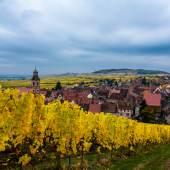 Famille Hugel (Alsace, France)
