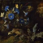 Otto Marseus van Schrieck, Blauen Winden, Kröte und Insekten (Detail), 1660  Öl auf Leinwand, 54 x 68 cm © Staatliches Museum Schwerin, Foto: Elke Walford