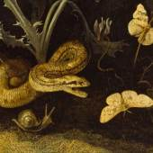 Otto Marseus van Schrieck, Waldboden mit Ringelnatter und Eidechse (Detail), 1669  Öl auf Leinwand © Staatliches Museum Schwerin, Foto: Elke Walford