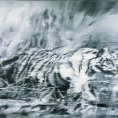 Gerhard Richter, Tiger, 1965 Öl auf Leinwand, 140 x 150 cm Museum Morsbroich, Leverkusen © Gerhard Richter 2018 (26022018)