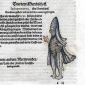 Konrad Gessner: Meerbischof (1555)