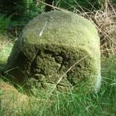 Historische Forstgrenzsteine im Rosengartener Staatsforst neu aufgestellt