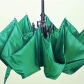 Bild 14: Günter Beier, grüner Regenschirm, Öl auf Leinwand, 2017; 80&60 cm. 3.900 €