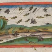 """Heuschreckenplage Jakob Mennel: """"Über Wunderzeichen"""" Miniatur, 1503"""