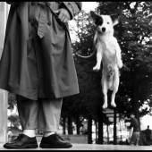 FRANCE. Paris. 1989 © Elliott Erwitt/Magnum Photos