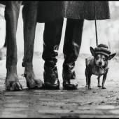 USA. New York. 1974. Felix, Gladys and Rover © Elliott Erwitt/Magnum Photos