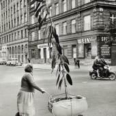 Franz Hubmann Ungewöhnlicher Pflanzentransport in Wien-Döbling 1954 © Franz Hubmann/Archiv Franz Hubmann/IMAGNO