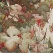 E.J. Detmold (1883-1957), Cape Grass Finches at Karen Taylor Fine Art