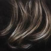 Jochen Hein, Haar, 2017 Acryl auf Holz, 25 x 30 cm