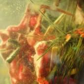Karl Karner, HLL 1, Detail, Mixed Media in Water, 2016