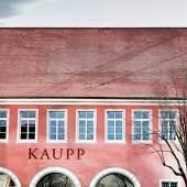 Unternehmenslogo AUKTIONSHAUS KAUPP