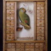 Joseph Cornell Untitled (Aviary withParrot and Drawers) c. 1949 Box construction, 43.8 x 35.6 x 8.3 cm The Robert Lehrman Art Trust, courtesy of Aimee and Robert Lehrman Photo The Robert Lehrman Art Trust, courtesy of Aimee and Robert Lehrman. Photography: Quicksilver Photographers, LLC © The Joseph and Robert Cornell Memorial Foundation / Bildrecht, Wien, 2015