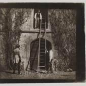 Exhibitor: Hans P. Kraus, Jr. Fine Photographs