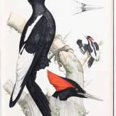 Malherbe, A. Monographie des picidées ou histoire naturelle des picidés. Schätzpreis:15.000 EUR
