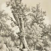 Louis Gurlitt, Zeichenschule, Bäume am Wegesrand, ab 1857, Foto Altonaer Museum