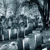 Max Halberstadt, Gräber auf dem Jüdischen Friedhof in Hamburg-Altona, Denkmalschutzamt Hamburg