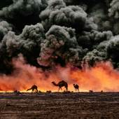 Kamele und Öl-Feuer, Kuwait, 1991 | Camels and Oil Fire, Kuwait, 1991 © Steve McCurry / Magnum Photos / Agentur Focus
