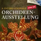 Orchideenausstellung 2013