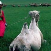 Ulrike Ottinger, Johanna d'Arc of Mongolia, 1989, Courtesy Sammlung Goetz