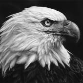 Robert Longo: Untitled (American Bald Eagle) 2017 Charcoal on mounted paper, 117,8 x 226,1 cm Ståhl Collection, Norrköping, Sweden © Robert Longo