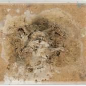 Dieter Roth Insel, 1968-1974 Joghurt-Schimmel, Nägel, Draht, auf Spanplatte, Plexiglasabdeckung 30,7 x 36 x 11,5 cm Sprengel Museum Hannover © Dieter Roth Estate Courtesy Hauser & Wirth Foto: Aline Gwose / Michael Herling, Sprengel Museum Hannover