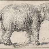 Rembrandt Harmensz. van Rijn Ein Elefant, 1637 © Albertina, Wien