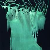 Sigmar Polke (1941 - 2010)  Ohne Titel (Interferenzbild Grün) | 1998 | Interferenz- und Dispersionsfarbe auf Papier | 101 x 68cm  Taxe: 70.000 - 100.000 Euro
