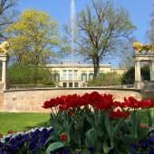 Frühlingserwachen in Schloss und Park Glienicke Foto: SPSG / Dennis Weiss
