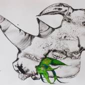 Rogelio Olmedo - Conversaciones con rinocerontes