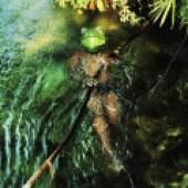 Verena Prenner, Congo Frog, 2020, Fine Art Baryta Papier auf Alu-Dibond, 60 x 70 cm, ed. 5+II