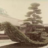 "Die segelschiffförmig geformte ""Boots- Kiefer"" im Garten des Kinkaku-ji-Tempels (0.9 MB) Japan, Kyōto, um 1900 Albuminabzug, H. 195 mm, B. 243 mm © KHM mit MVK und ÖTM"