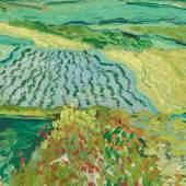 Vincent van Gogh, Die Ebene von Auvers, 1890, Öl auf Leinwand, 50 x 101 cm, Belvedere, Wien, Inv.-Nr. 1007 © Belvedere, Wien, Foto: Johannes Stol