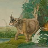 A164 / 3507 ALOYS ZÖTL (Freistadt 1803-1887 Eferding) Rhinoceros sinus. (Burchell) Feder in Schwarz und Aquarell. Signiert und datiert: A. Zötl pinx. 1861. 44x54,5 cm.  CHF 6 000 / 9 000