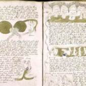 Das Voynich-Manuskript. Die Schrift, die keiner lesen kann, hält Kryptologen in Atem. Foto: Beinecke Rare Book and Manuscript Library Das Voynich-Manuskript. Die Schrift, die keiner lesen kann, hält Kryptologen in Atem. Foto: Beinecke Rare Book and Manuscript Library