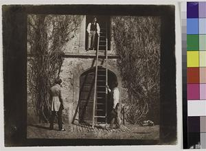 Hans P. Kraus, Jr. Fine Photographs   William Henry Fox Talbot (British 1800-1877), The Ladder  Salt print from a calotype negative, 17.1 x 18.3 cm on 19.6 x 23.8 cm paper.  Late April 1844.